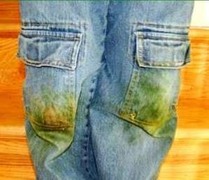 pantalones-hierba-e1424361309760